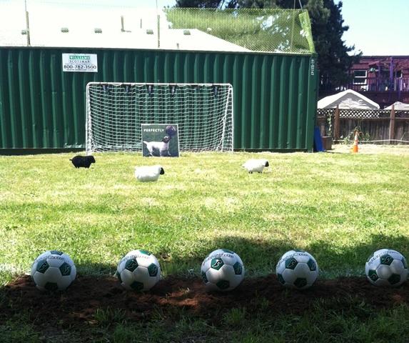 Ardbeg-Football