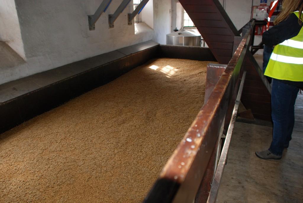 Balvenie6 Grains get wet