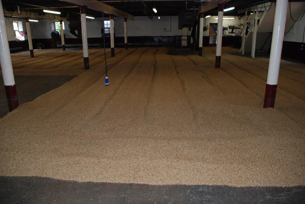 Balvenie7 Grains go to malting floor