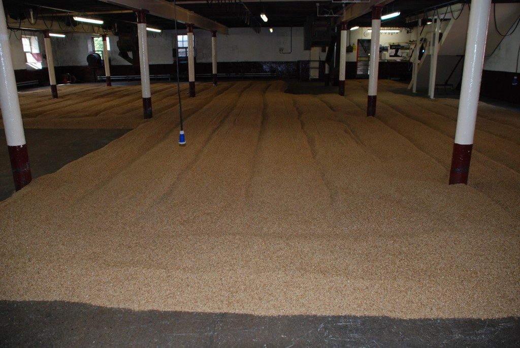 Balvenie7 Grains go to malting floor